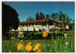 MIRANO (VE)  TRATTORIA E OSTERIA  AI  MOLINI        (NUOVA) - Hoteles & Restaurantes