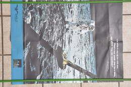 NEIL ARMSTRONG MARCHE SUR LA LUNE Le 20 Juillet 1969 - Documents Historiques
