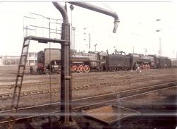 TRAIN EN GARE  12X9CM - Photos