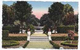 L ' ISLE Sur SORGUE  Jardin Public - L'Isle Sur Sorgue