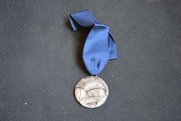 Medailles 180 Novembre 1918 En Hommage Ariege - France