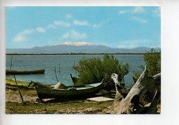 REF 280  : CPSM 66 En Roussillon Des étangs Vue Sur Le Canigou - Francia