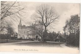 ----45-----  Château Des Bordes Par LAILLY Neuve Excellent état - Autres Communes