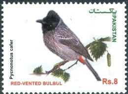 PAKISTAN MNH (**) STAMPS (RED VENTED BULBUL BIRDS OF PAKISTAN SERIES  2013) - Pakistan