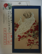 White Peacock,China 2000 Flower & Bird Chinese Painting Postal Stationery Card - Peacocks