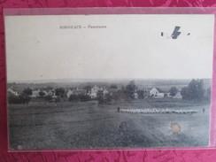 BORDEAUX . PANORAMA .MOUTON AVEC BERGER ET AVION QUI SURVOLLE - Other Municipalities