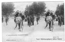 VUES STEREOSCOPIQUES  JULIEN DAMOY  PARIS JARDIN D ACCLIMATATION  L ELEPHANT    ***     A  SAISIR  **** - Stereoscopische Kaarten