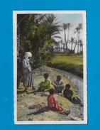 CPSM COLORISEE COLLECTION ARTISTIQUE L AFRIQUE - MUSIQUE DE PLEIN AIR - - Cartes Postales