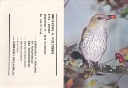 Kalender 1976 Drukkerij A. Bulckens Herenthout ( Vogel ) - Herenthout