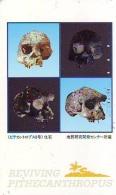 Télécarte Japon * Archaéologie Préhistoire (33) Japan Phonecard Archaeology * Telefonkarte * ARCHEOLOGY * CULTURE - Tarjetas Telefónicas