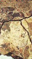 Télécarte Japon * Archaéologie Préhistoire (56) Japan Phonecard Archaeology * Telefonkarte * ARCHEOLOGY * CULTURE - Télécartes