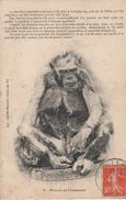 85A076 CPA 85 - 8. Histoire De Chimpanzé Bateau Echoué Par Une Tempête En 1912 à Brétignolles (85 - Bretignolles Sur Mer