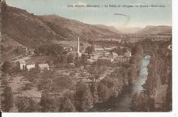 BLESLE     La Vallée De L'Alagnon Le Babery Blesle Gare   ETAT - Blesle
