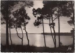 Ile D'Oleron (Charente-Maritime) - St-Trojan-les-Bains, Pertuis De Maumusson Vu De Gatsau