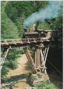 Train Railway Station Bahn Bahnhof Romania Narrow Gauge Tazlo Kuzlau Post Card Postkarte Karte 6614 POSTCARD - Treni