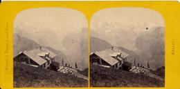 Braun, A., Interlaken, Schienigeplatte, No.4667 - Photos Stéréoscopiques