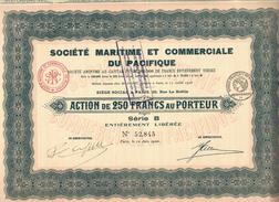 ENTREPRISES COLONIALES PARIS SAIGON SOCIETE MARITIME ET COMMERCIALE DU PACIFIQUE 1920 V.SCANS+HISTORIQUE - Navigation