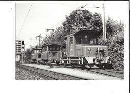 16575 - Schöftland Te 2/2 51-50-47 Train Edition BVA (format 1X 15) - AG Argovie