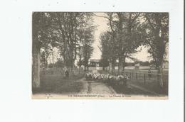 HENRICHEMONT (CHER) 113 LE CHAMP DE FOIRE (TROUPEAU DE MOUTONS)  1924 - Henrichemont