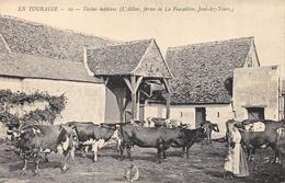 CPA 37 VACHES LAITIERES L ALLIER FERME DE LA FRAZELIERE JOUE LES TOURS - France