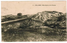 De Haan, Coq Sur Mer, Den Haan, Villas Aurore Et Les Oiseaux (pk32874) - De Haan