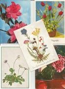 5 CART. FIORI - Cartoline