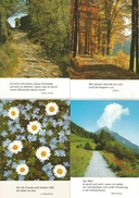 9 CART. NATURA FRASE IN LINGUA TEDESCA - Cartoline