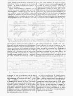 DEPLACEMENTS VIBRATOIRES DES RAILS Pendant Le PASSAGE DES TRAINS EN MARCHE  1888 - Chemin De Fer