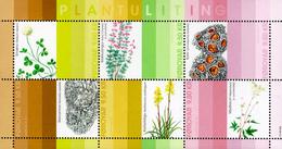 Faroe Islands - 2017 - Plants - Natural Dye - Mint Souvenir Sheet - Faeroër