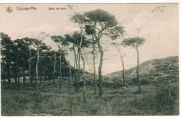 De Haan, Coq Sur Mer, Den Haan, Dans Les Bois (pk32888) - De Haan