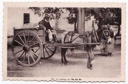Ancienne Carte Animée, âne à Culottes Ile De Ré, Attelage - Paysans