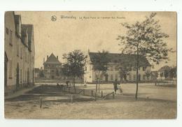Winterslag   *  Le Rond-Point Et L'avenue Des Acacias - Genk