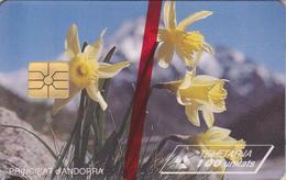 AND26 NARCISSES JAUNES 100 GEM 06/95 NSB-ANDORRE