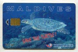 TK14310 MALDIVES - Chip 256 MLDG... Turtle - Maldives