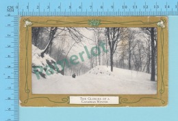 Canada  -The Glories Of A Canada Winter, Christmas Gerrting Card # 4, Used In 1924.-  2 Scans - Altri