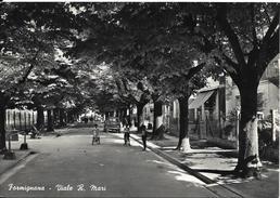 Emilia Romagna-ferrara-formignana Viale R.mari Animata Veduta Della Via 1959 - Autres Villes