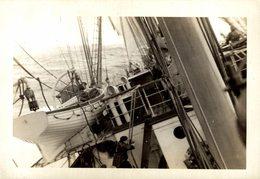 +- 11.50* 8.5 CM Voilier - Velero Sailboat - Barche