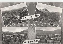 10916) PROVINCIA MASSA SALUTI DA REGNANO FRAZIONE POGGIO CASTELLO PANORAMA - Massa