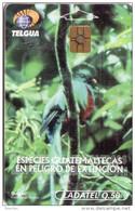 GUATEMALA OISEAU VOGEL BIRD  QUETZAL Q50 UT - Guatemala