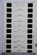 LESTRADE :  SAVOIE N°16   CHAMONIX - Timbres