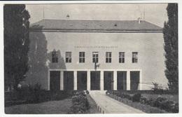 Croatia, Sisak, Gymnasium Sisak (Vladimir Majder) Old Postcard Travelled 1955 B170420 - Kroatië