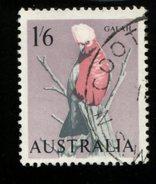 443119196 AUSTRALIA DB 1963 1965 GEBRUIKT USED OBLITERE GEBRAUCHT YVERT 293 - 1952-65 Elizabeth II : Ed. Pré-décimales