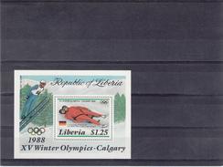 XV Winter Olympics / Gold Medal Winner