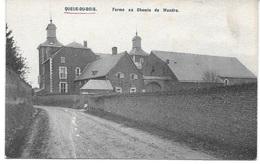 QUEUE DU BOIS (4610) Ferme Au Chemin De Wandre - Beyne-Heusay