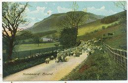 Homeward Bound - Agriculture