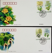 China 2006-5 Plant Of Relic Species Stamps FDC - 1949 - ... People's Republic