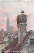 "STRASBOURG (67) Nid De Cigogne - Storchennest - Illustration De N. BERAUD - Carte Postale ""TUCK"" - Strasbourg"