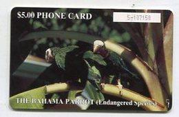 TK14366 BAHAMAS - Chip - The Bahama Parrot - Bahamas