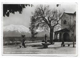 CUNEO SANTUARIO MADONNA DEGLI ANGELI   VIAGGIATA  FG - Cuneo