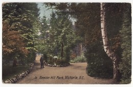 VICTORIA BC Canada, BEACON HILL PARK VIEW - PATHWAYS AND PLANTS - C1912 Vintage Postcard - Victoria